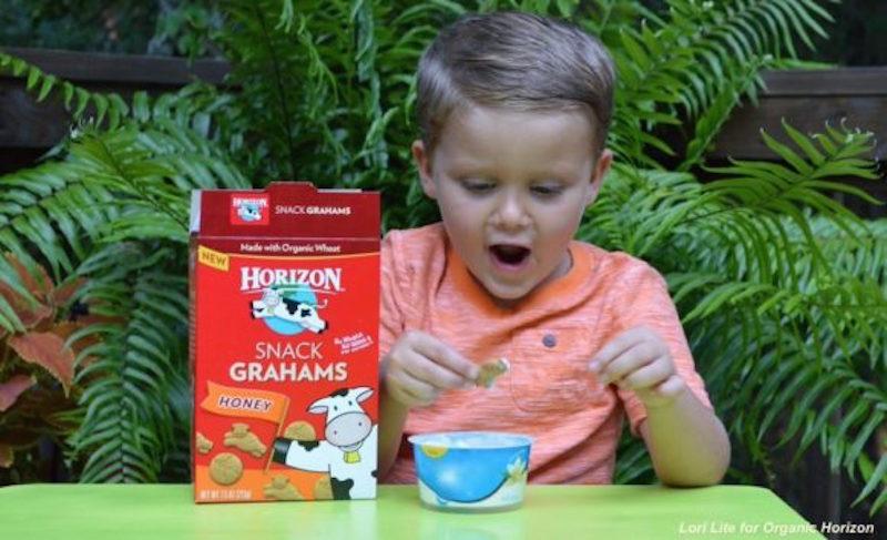 Organic Snacks for School
